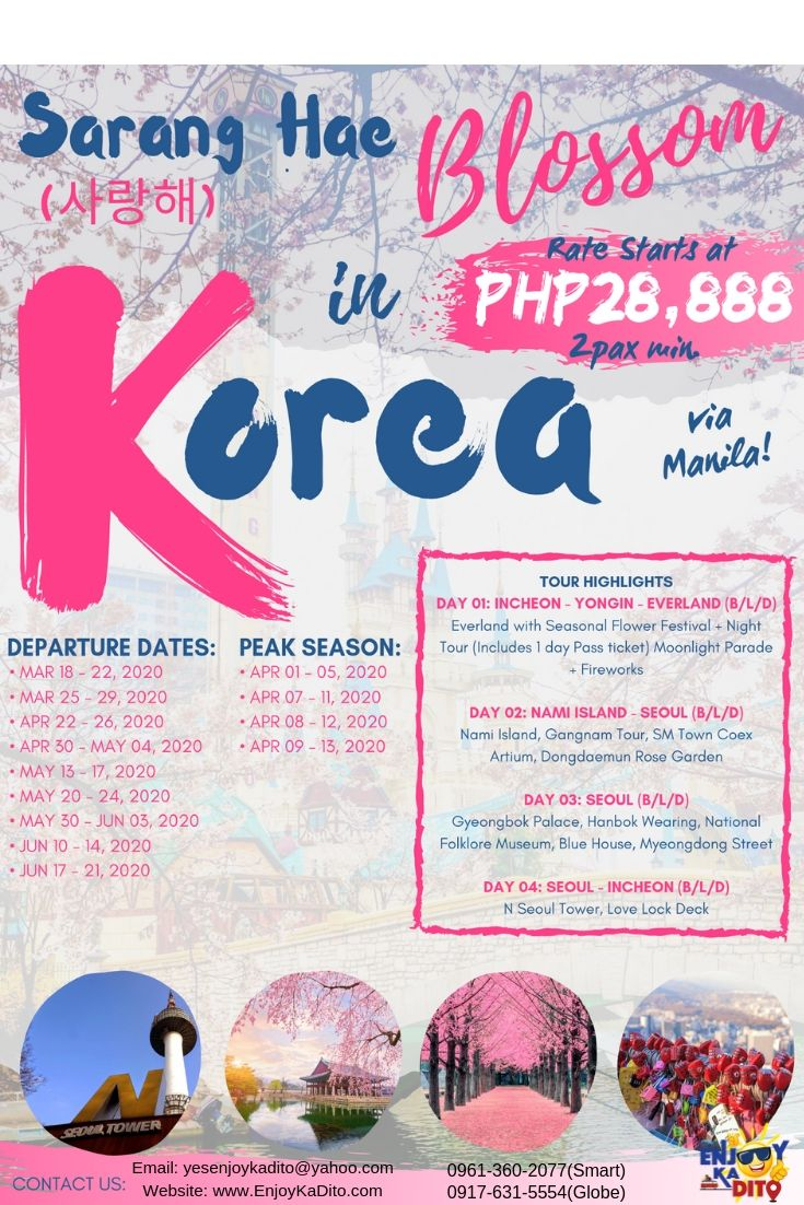 Korea Blossom Package by MCP Greenery Travel and Tours